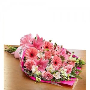 Flower Delivery in Ajmer