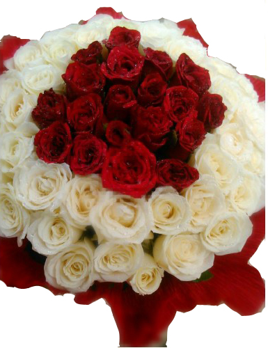 Send this huge bunch of red and white roses to your love ones giftzbag mightylinksfo