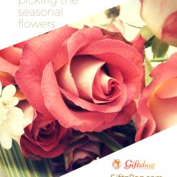 Online Florist in jaipur:Giftzbag.com