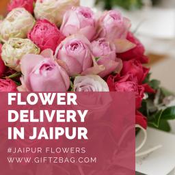 Online Flowers Delivery in Jaipur : Giftzbag.com