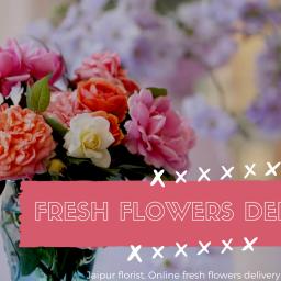 Buy Online Flower in Jaipur