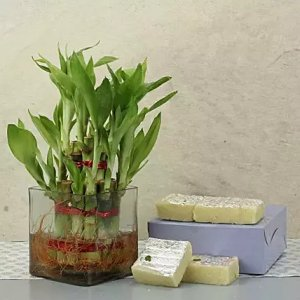 mothers_day_spiceal_sweets_n_gift