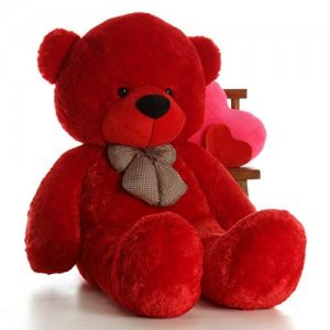 teddy bear for her