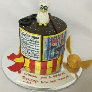 Harry Potter Hedwig theme Cake