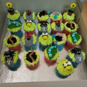 Insects and Amphibians Cupcakes set of 10
