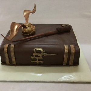 Harry Potter Book Birthday Cake