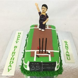 35th Birthday Cricket Cake
