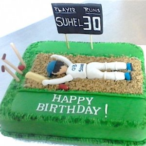 30th Birthday Cricket Cake