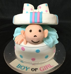 Boy or Girl Baby Shower Cake