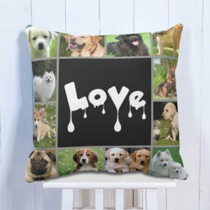 Personalised Cushion The Pet Lovers