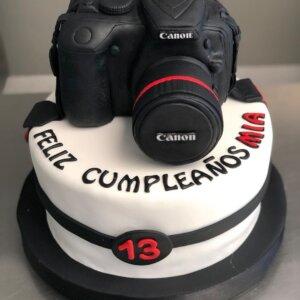 Simple Camera Cake
